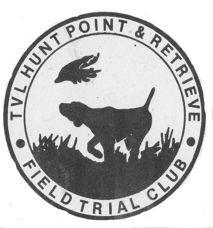 German Shorthaired Pointer Gsp Pointer Gundog Bird Dog